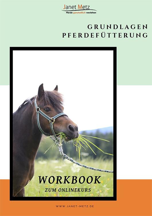 Workbook_s