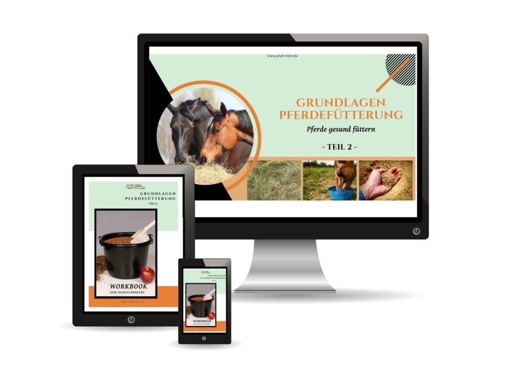 Dein Infomagazin für ganzheitliche Pferdegesundheit